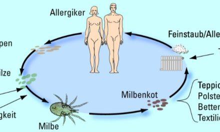 Allergische Erkankungen